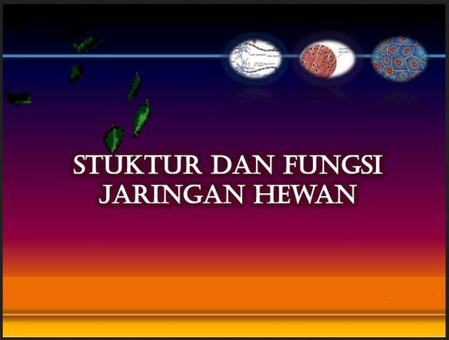 UKBM BIOLOGI JARINGAN HEWAN
