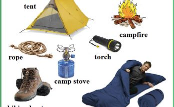 ENGLISH DAILY TEST CAMPING VOCABULARIES